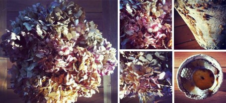 Taller Leixuri Jardines & Flores