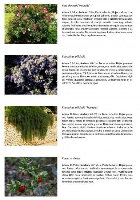 Catálogo de especies