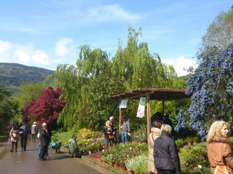 La Feria de Plantas de Colección | Landare Berezien Azoka atrae este año a 48 expositores.