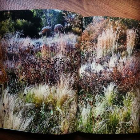 Una de las muchas plantaciones de Oudolf que ilustran el libro.