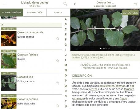 La aplicación incluye más de 300 ilustraciones que facilitan la identificación de especies y cerca de 400 fotografías con los detalles más característicos de cada especie.