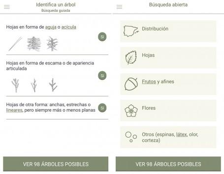 La búsqueda puede ser guiada, detallando paso a paso las características del árbol para su identificación, o abierta, introduciendo algunas de sus características para acotar el rango de búsqueda.